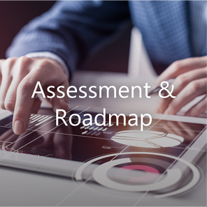 Assessment and Roadmap