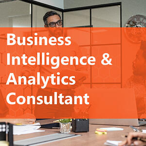 Business Intelligence and Analytics Consultant