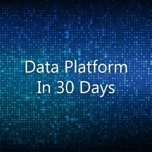 Data Platform in 30 Days