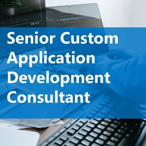 Senior Custom Application Development Consultant